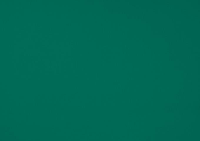 Toile de store banne Dickson col vert