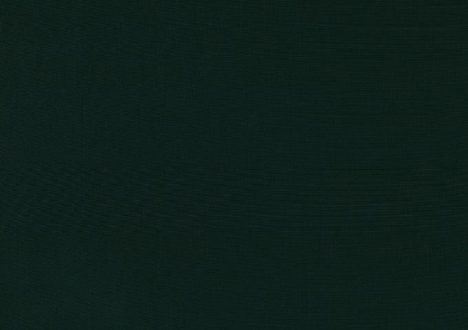 Toile de store banne Dickson col tweed vert (tweed/vert)