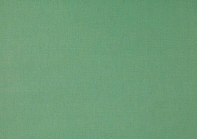 Toile de store banne Dickson col vert tilleul (vert tilleul)