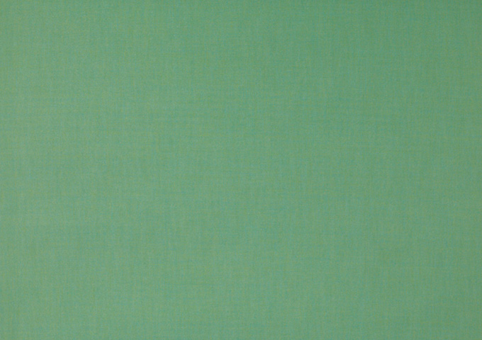 Toile de store banne Dickson col vert tilleul