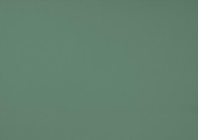 Toile de store banne Dickson col fougère (Vert Fougère)