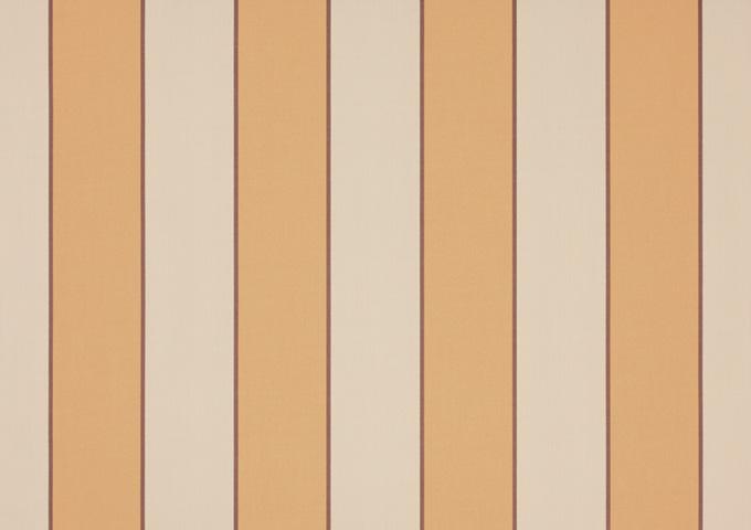 Toile de store banne Dickson col sienne jaune