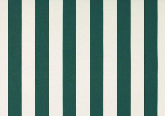 Toile de store banne Dickson col rayures blanc vert (Vert)