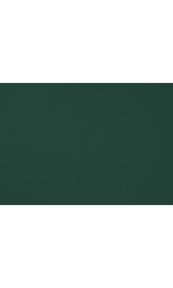 Toile de store banne Dickson col vert foncé (vert foncé)