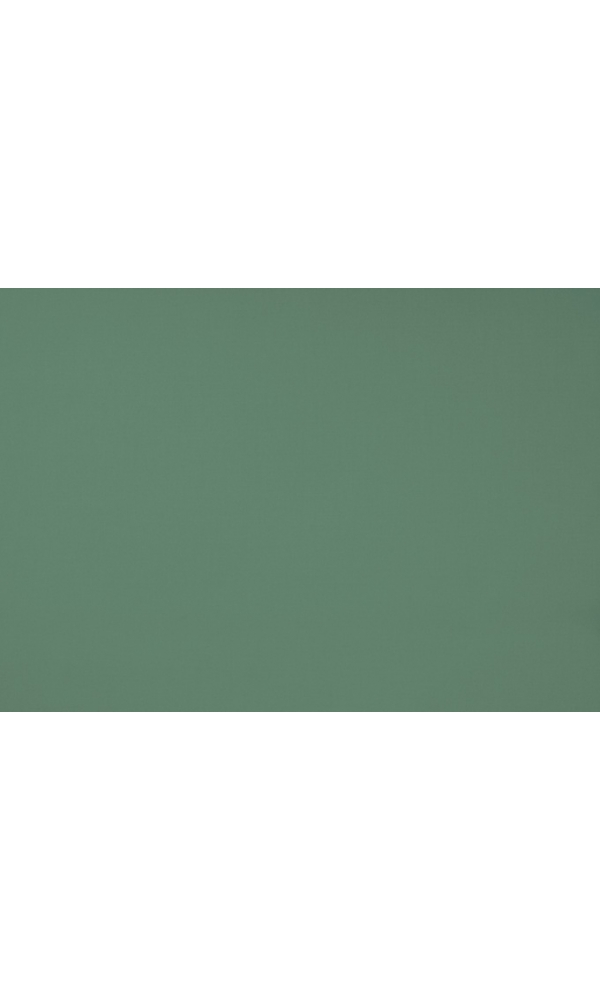 toile de store banne dickson col foug re vert foug re. Black Bedroom Furniture Sets. Home Design Ideas