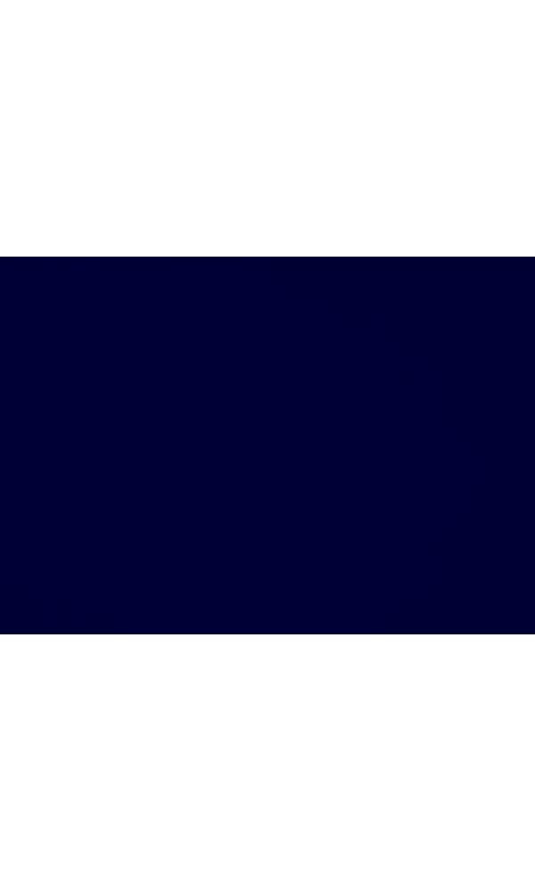 Toile de store banne Dickson col bleu nuit