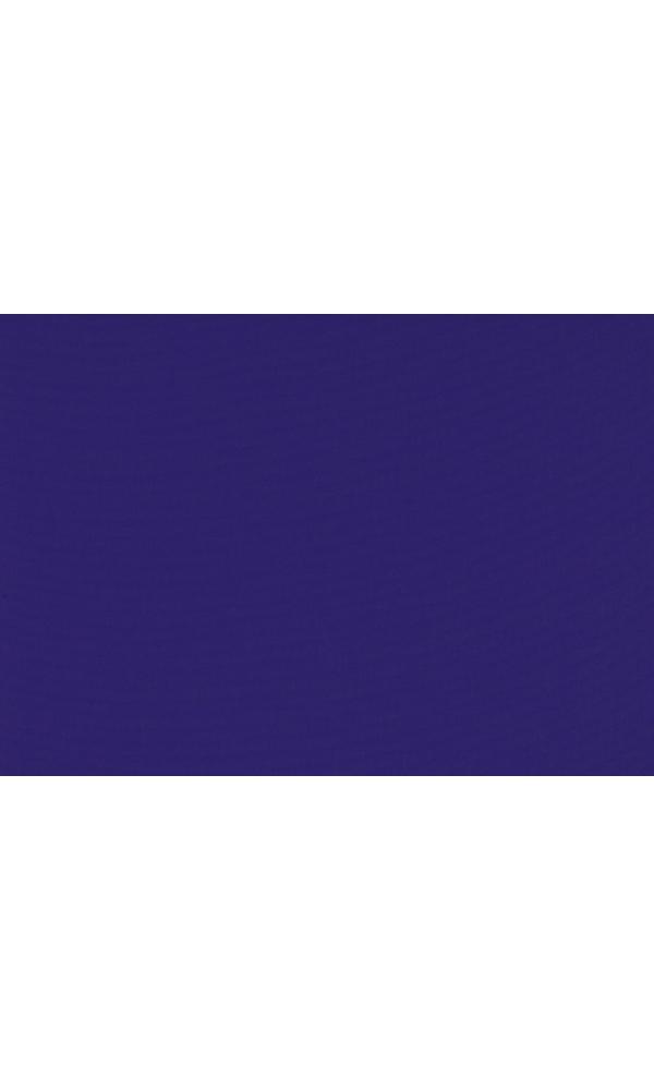 Toile de store banne Dickson col purple