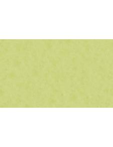 Papier Peint Uni Aspect Patiné