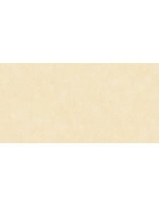 Papier Peint Uni légérement Patiné