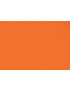 Toile de store banne Dickson col orange