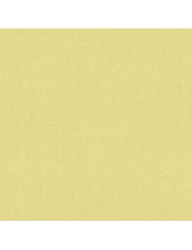 Papier Peint Uni et Coloré