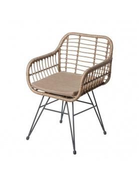 Lot de 2 chaises en acier et rotin