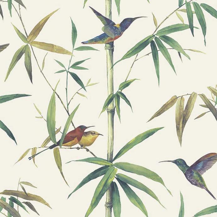 Papier peint LUTECE imprimé colibris (Ecru)