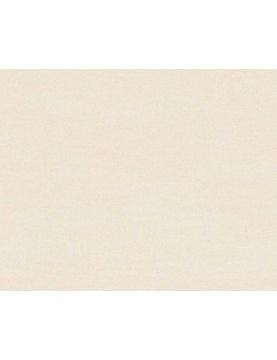 Papier Peint en Intissé Uni